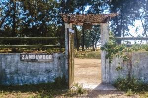 Zambawood
