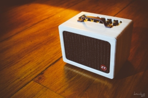 The ZT Lunchbox Acoustic Amplifier is a pocket rocket! It is small in size (shaped and sized like a lunch box) and weights only 12lbs. It's small size is deceiving because it is moderately loud. ( online reviewers claimed it was loud enough to be heard inside coffee houses and small venues) It is not a practice amp but a performance amp :D