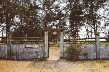 Zambawood 2016