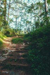 Turning back... CJH Eco Trail (Sony RX100M4)