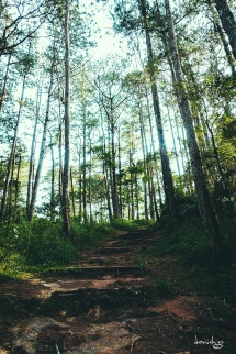 Steep, slippery and muddy - CJH Eco Trail (Sony RX100M4)
