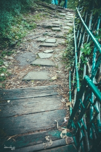 It's perfectly fine to walk alone as long as you are walking along the right path. - CJH Eco Trail (Sony RX100M4)