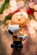 Charles Brown & Snoopy are wishing you a most joyous CHRISTmas :)